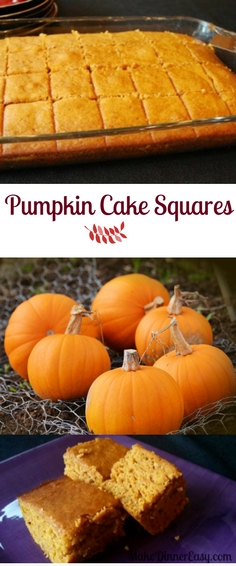 pumpkin cake squares recipe